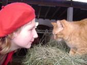 Unsere Katzen freuen sich über Besucher