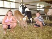 DAs Foto zeigt Kinder im Stall
