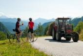 Das Foto zeigt Radfahrer